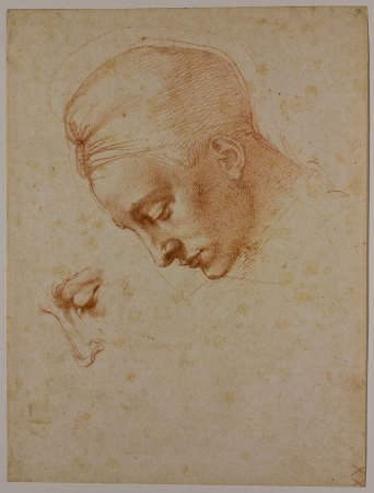 ミケランジェロ・ブオナローティの画像 p1_22