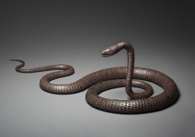 《自在蛇》 宗義