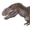 「大恐竜展-ゴビ砂漠の驚異」 貴重な化石標本一堂に 国立科学博物館で開催